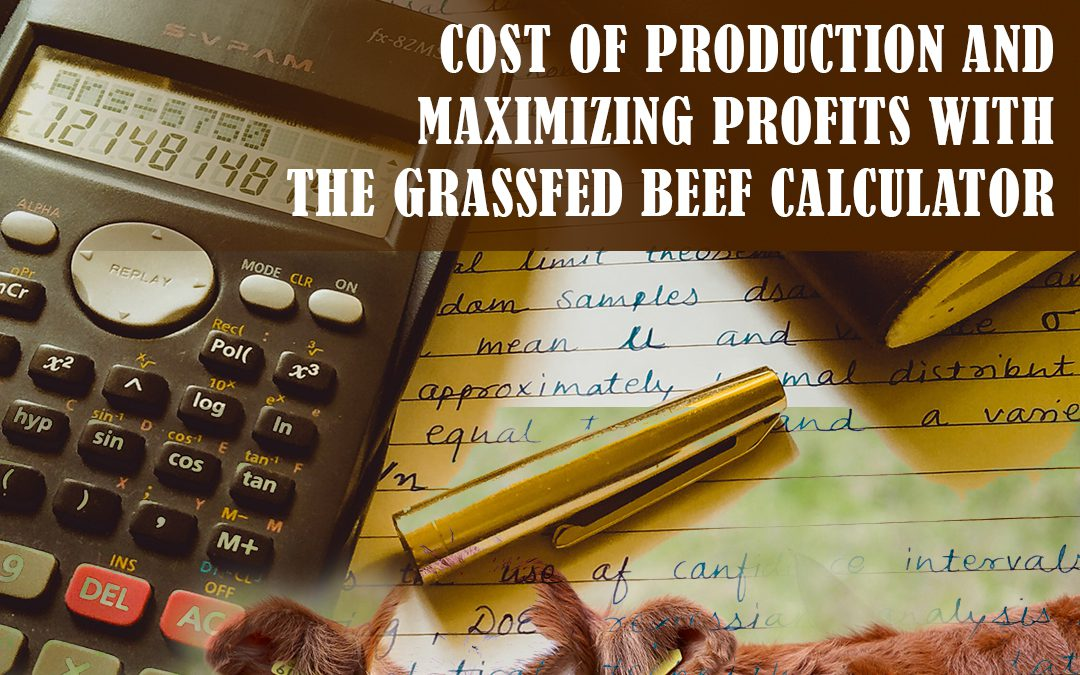 Maximizing Profits Webinar: Cost of Production with the Grassfed Beef Calculator