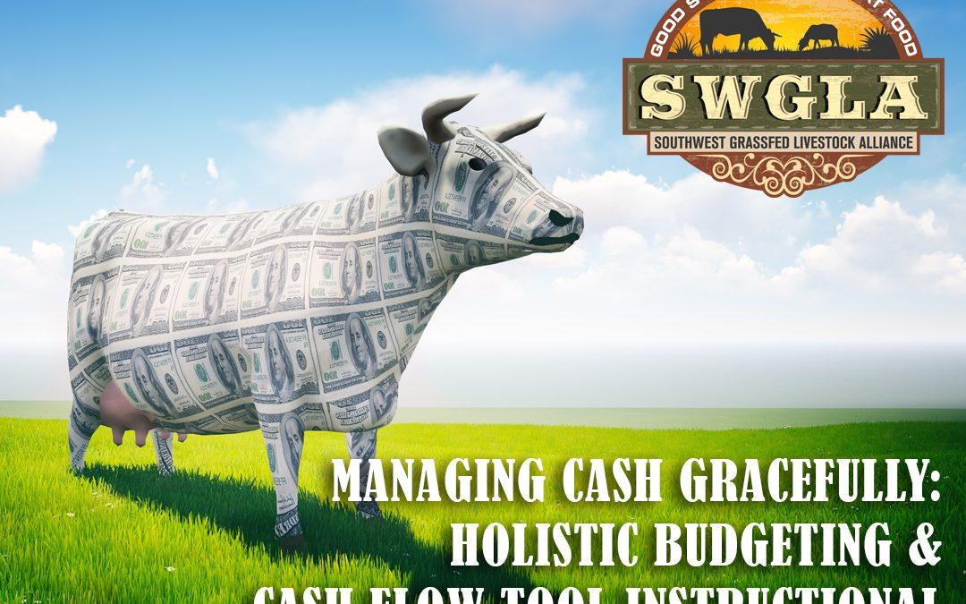 A 2-Part Webinar: Managing Cash Gracefully—Holistic Budgeting & Cash Flow Tool Instructional