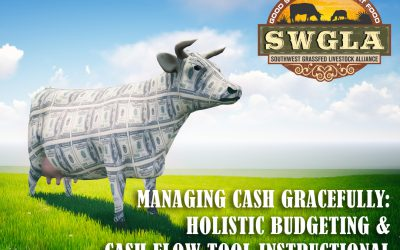 A 2-Part Webinar: Managing Cash Gracefully—Holistic Budgeting & Cash Flow Tool Instructional